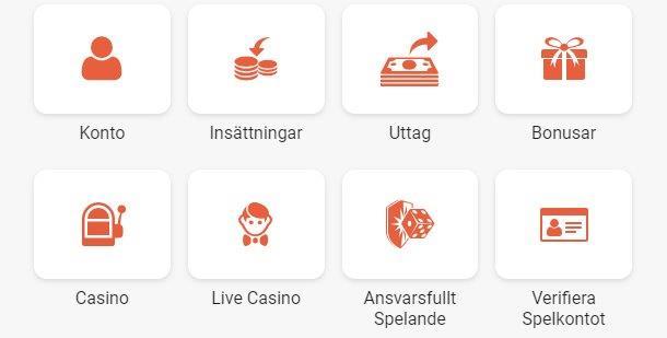 Insättningar och Uttag på Casino
