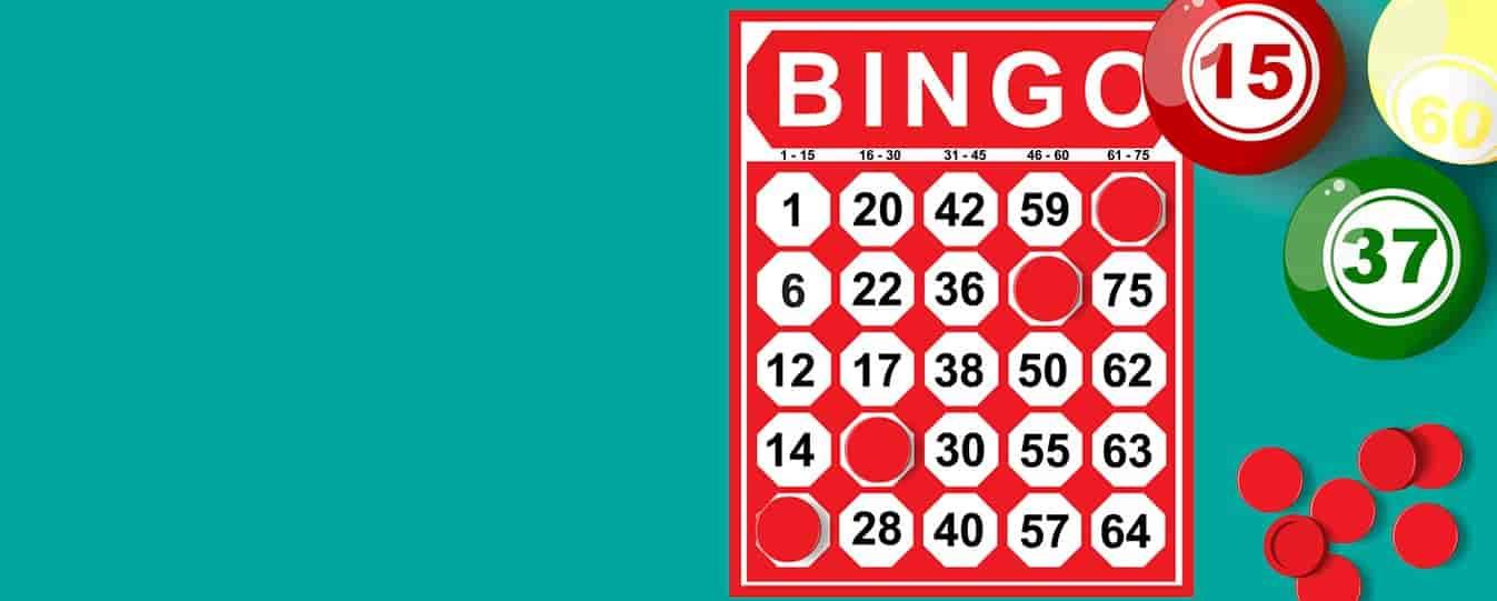 bingo-online-cto