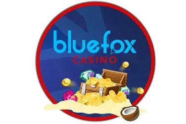 Visit Bluefox