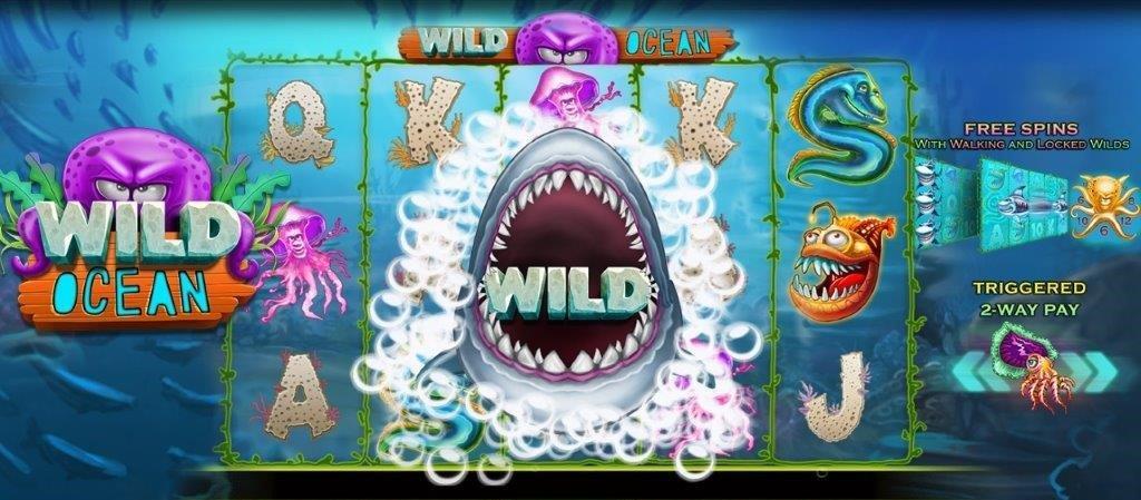 wild ocean booming games recension