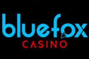 Bluefox logo