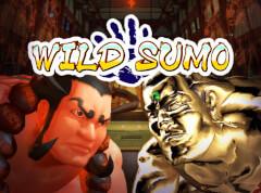 Wild-Sumo-slot-game