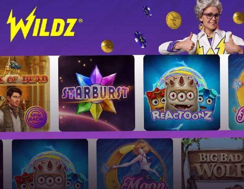Visit Wildz Casino